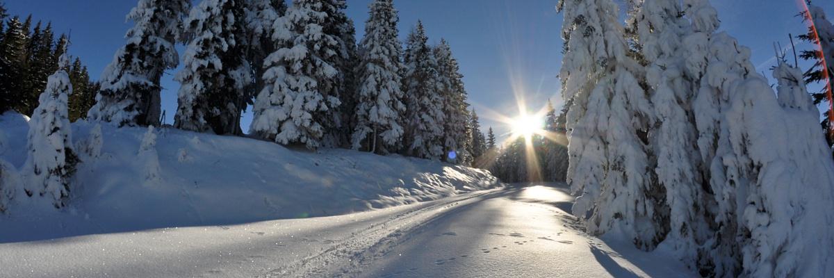 Winter auf der Planai - Foto: Wolfgang Huber